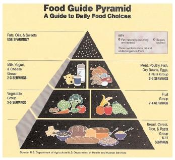 The Food Guide Pyramid, last updated in 1992, could be revised for release in 2005. Proposed changes would include more recent nutritional recommendations and may be tailored to specific ages and activity levels to help reverse the nation's trend toward obesity. [EPD Photos. The Gale Group.]