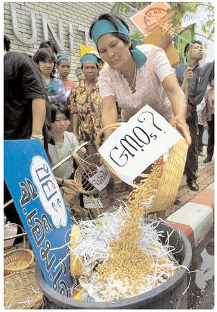 A protest of genetically modified foods in front of the regional headquarters of the United Nations in Thailand. Critics of genetically modified foods cite concern over the possibility that modified foods might have unexpected and dangerous properties. [© AFP/Corbis. Reproduced by permission.]